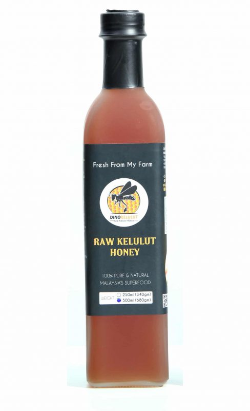 Madu Kelulut Stingless Bee Trigona Honey 500ml Bottle Raw and Organic Fresh from my Farm