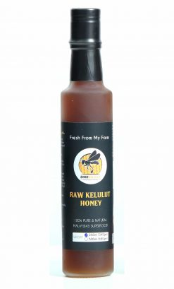 Madu Kelulut Stingless Bee Trigona Honey 250ml Bottle Raw and Organic Fresh from my Farm