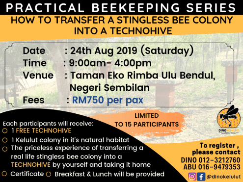 STINGLESS BEE KEEPING HANDS ON WORKSHOP
