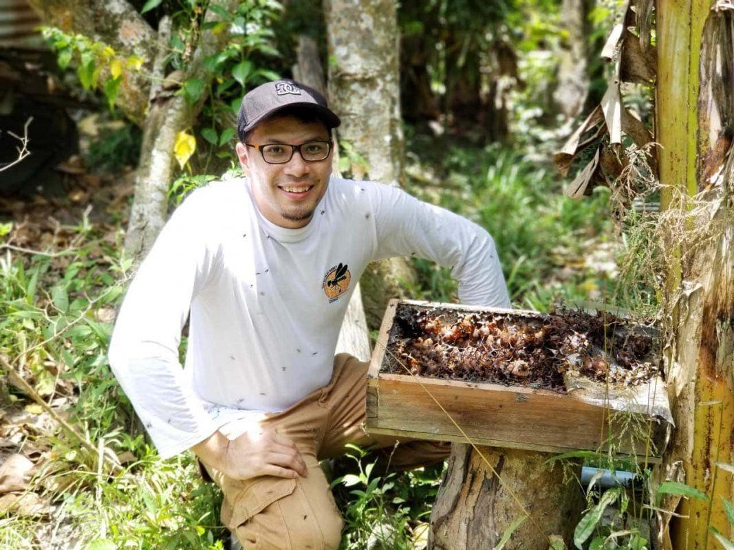 Fresh Raw organic Madu Kelulut stingless bee trigona honey