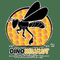 dinokelulut-honey-logo